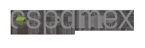 Logo Espamex Solo - 300x100 Gris
